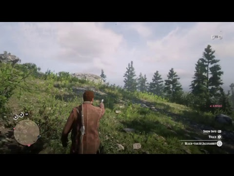 Red Dead Redemption 2 FREE ROAM GAMEPLAY
