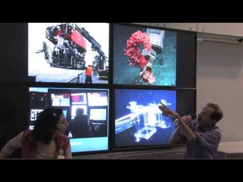 Gary Williams: Chat with an Academy Scientist | California Academy of Sciences
