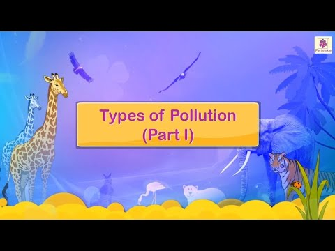 Types of Pollution | Science for Kids | Grade 4 | Periwinkle