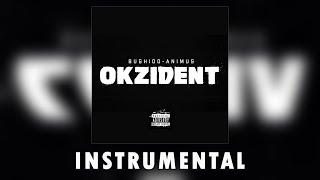 Bushido & Animus - Okzident Instrumental (remake by SVNTY7)