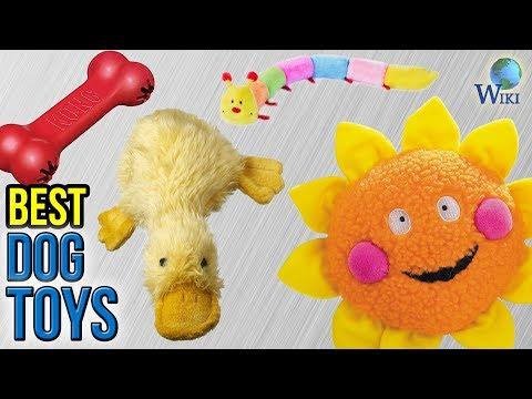 10-best-dog-toys-2017
