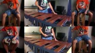 Swinging Cecilia - Rien Heuver (Simon & Garfunkel cover)