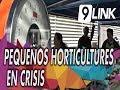 C9 - Pequeños horticultures en crisis