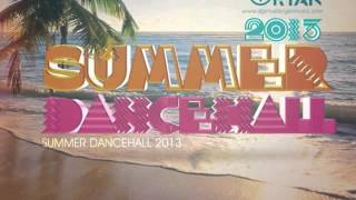 Dj Private Ryan - The Summer Dancehall Sampler 2013