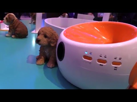Wearable technology for dogs at MWC 2016