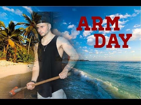 ARMS IN PARADISE