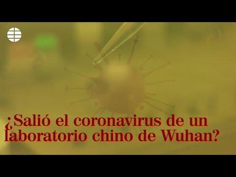 ¿Salió El Coronavirus De Un Laboratorio Chino De Wuhan?