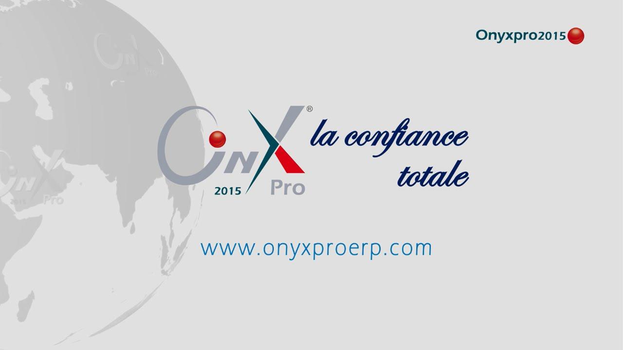 Infographie vidéo sur ONYX Pro ERP en français