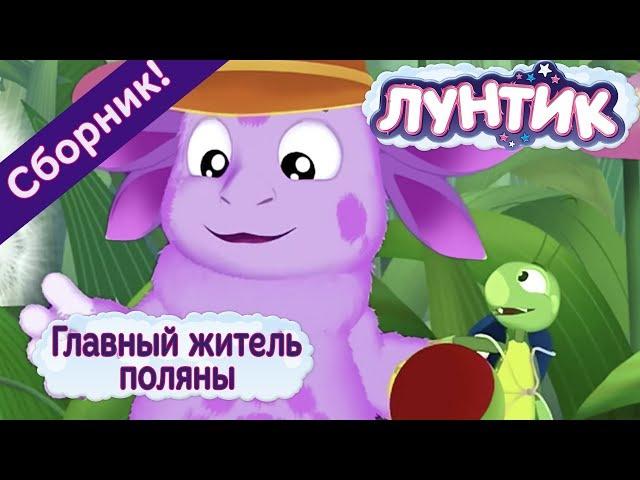 Лунтик - Главный житель поляны. Сборник мультиков