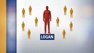 Ce que l'on sait sur Logan N., terroriste présumé d'ultra-droite