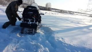 видео: Тайга съмка после выхода из снежного плена