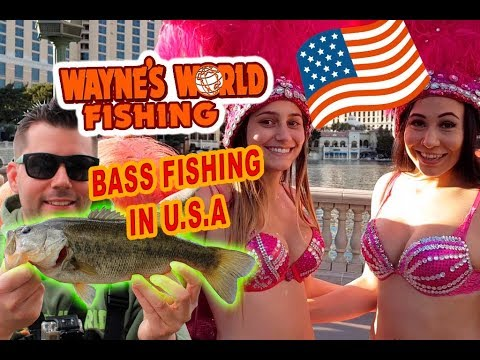 Bass fishing in California, lake Casitas and Echo Park Los Angeles