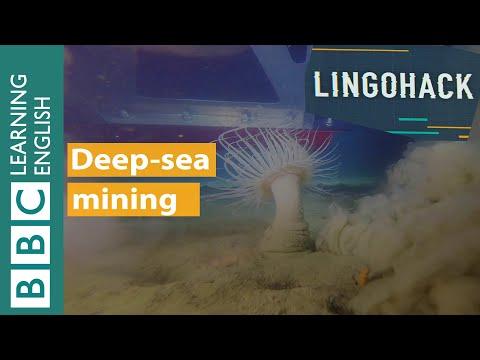 Deep-sea mining: Lingohack