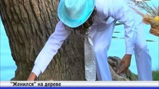 Аргентинец женился на дереве