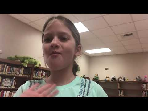 Bayou blue elementary school library tour