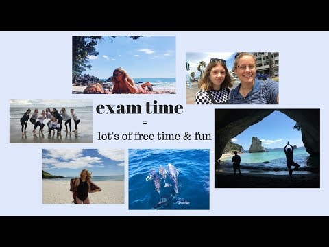 exam time - lots of fun | exchange diary NZ