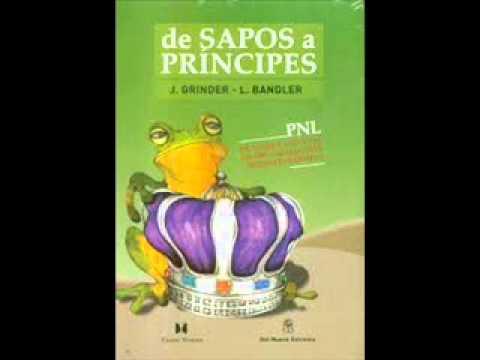 Libro Pnl Pdf