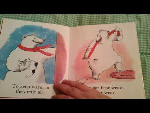 Unsettling Children's Book Bare Bear