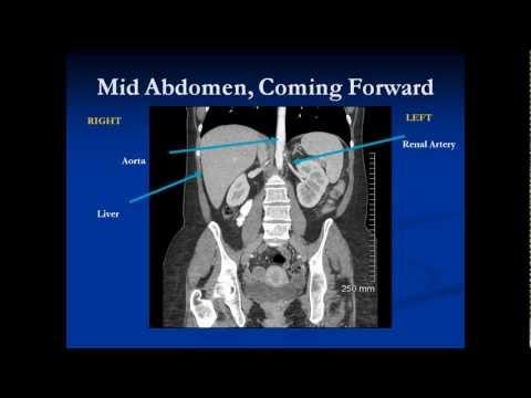 Abdomen Review (2009)