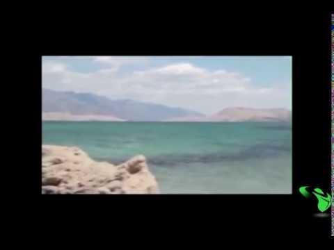 مفاجأة مرعبة ظهور حورية البحر حقيقية Amazing Mermaid On The Rock sirena real - 동영상