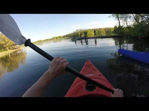 Morrison-Rockwood Muskie Caught While Bluegill Fishing