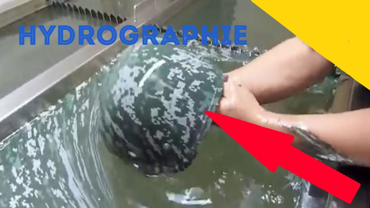 Hydrographie Peinture A Leau Sur Objet Water Transfert Youtube