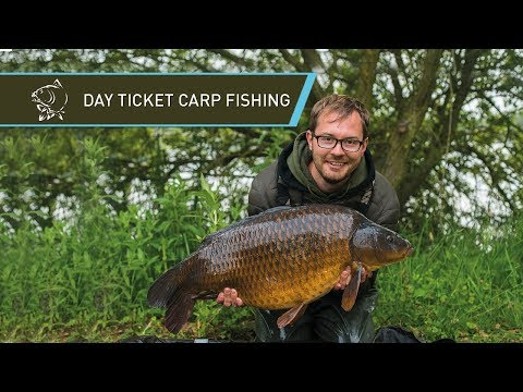 DAY TICKET CARP FISHING WITH MAX HENDRY