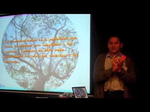 coaching-pnl-|-creencias-|-programación-neurolinguistica-|-conferencias-pnl-4-de-7-.m4v