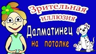 Зрительная иллюзия: Далматинец на твоем потолке =))