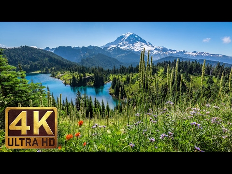 3 Hours Instrumental Piano Music & 4K Nature Photo Collection of Washington State - Part 10