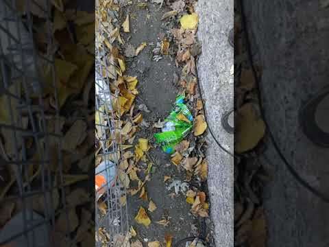 Marathonea - 2014 Rock N' Roll Montreal Marathon - Finish line (42.2 km)