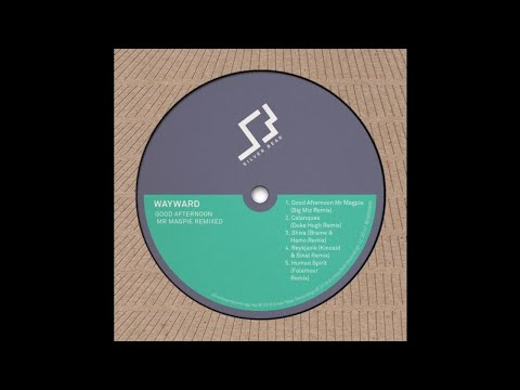 Wayward - Shiva (Brame & Hamo Remix)
