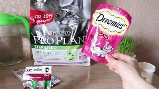 Покупки для домашних животных Purina Pro Plan, Мнямс,  Лизун Прыг-Скок, Dreamies ,Фелвит, Гепатовет