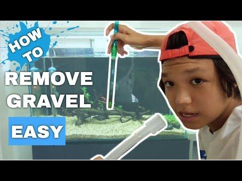 HOW TO: Remove Fish Tank Gravel - Remove Aquarium Substrate