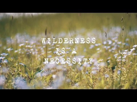 wilderness is a necessity