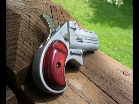 Derringer - Personal Protection Firearm