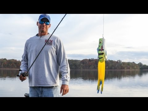 Strike King | KVD Popping Perch