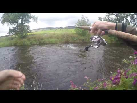 Salmon Fishing In The Lake District