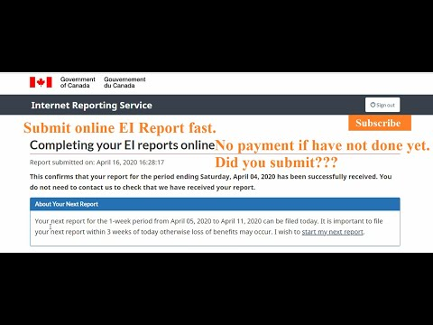 How To Submit EI Report Online? Why You Did Not Receive Employment Insurance (EI) Payment? Covid 19