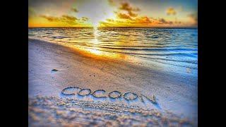 COCOON MALD VES 5 МАЛЬДИВЫ 2021 ПОЛНЫЙ ОБЗОР