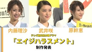 現在放送中の武井咲、原幹恵、内藤理沙が出演の ドラマ「エイジハラスメ...