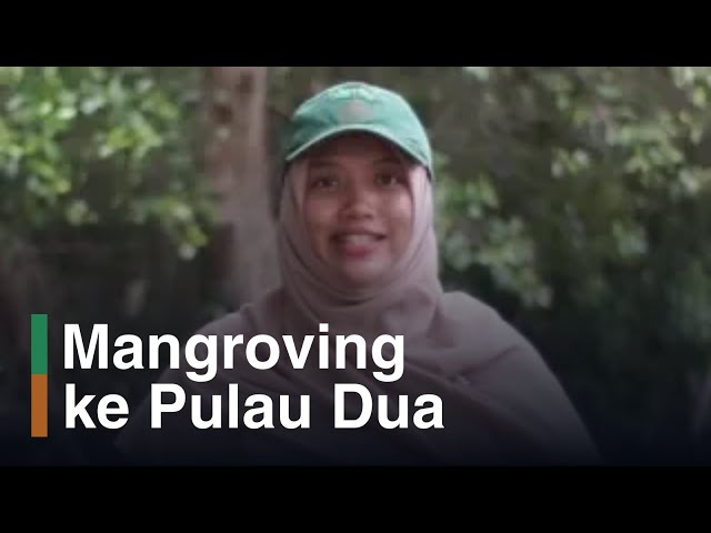 Wisata ke Kawasan Konservasi Cagar Alam Pulau Dua di Serang, Banten