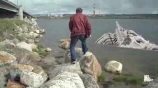 «МУРМАНА ФАН» (#4 МУРМАНСК)(Мурманск - крупнейший в мире город, расположенный за Северным полярным кругом, отмечает в этом году 100-летие..., 2016-04-15T02:29:29.000Z)
