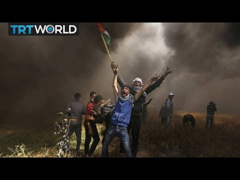 Israel-Palestine Tensions: UN says Israel has no justification for Gaza killings