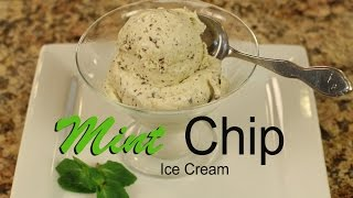 Healthy Mint Chocolate Chip Ice Cream With All Natural Ingredients  Rockin Robin