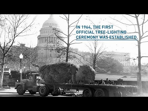 Capitol Christmas Tree | Architect of the Capitol