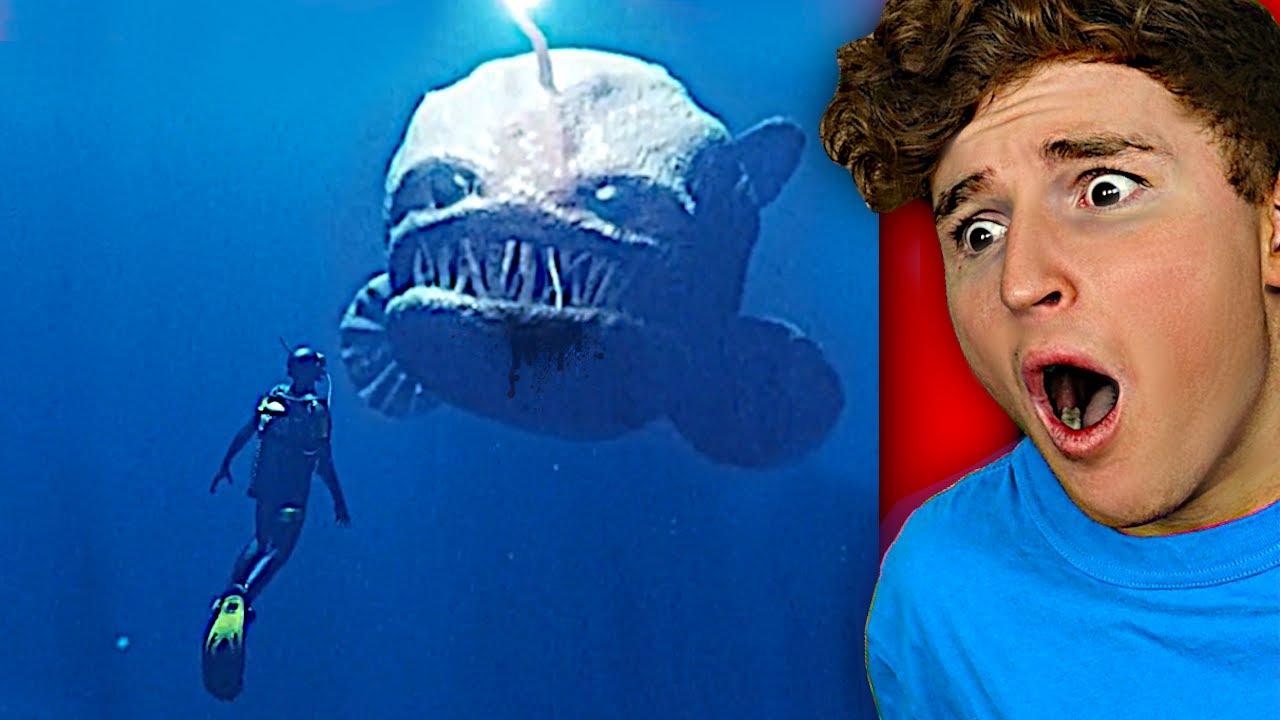 The Ocean Is WAY SCARIER Than You Think..
