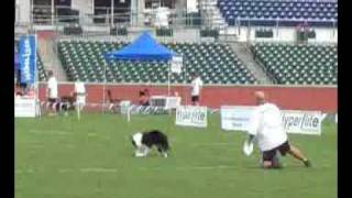This video was from the Skyhoundz 2009 Open Expert Freestyle Class ...