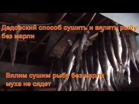 - форум о рыбалке в Пензе и Пензенской