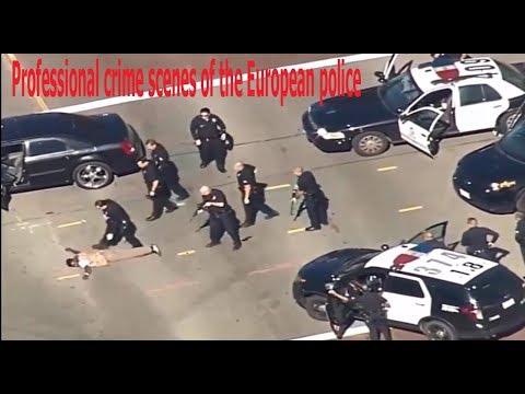 Professional crime scenes of the European police